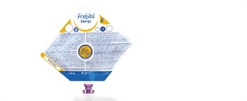 Frebini Energy 500 ml