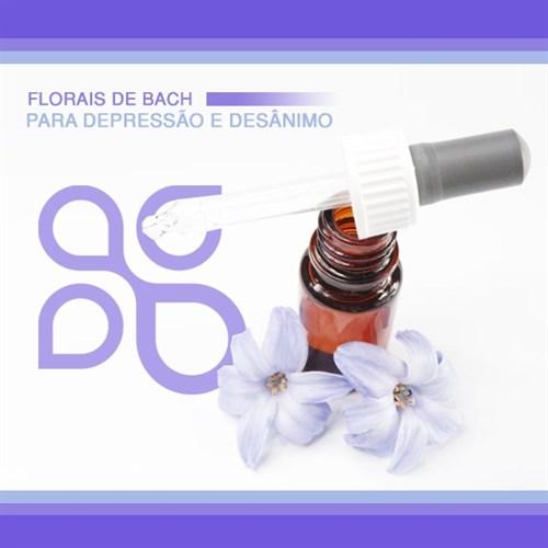 Floral de Bach para depressão e desânimo