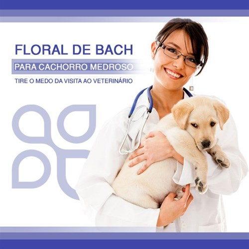 Floral de Bach para cachorro medroso