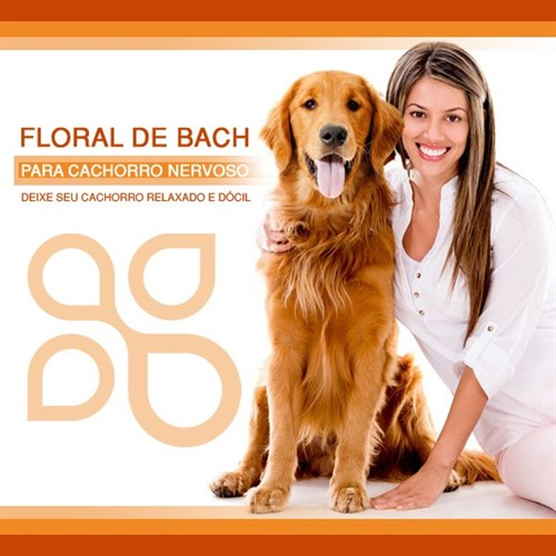 Floral de Bach para cachorro nervoso