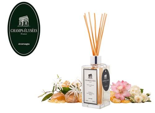 Champs-Élisées - France - Aroma sticks