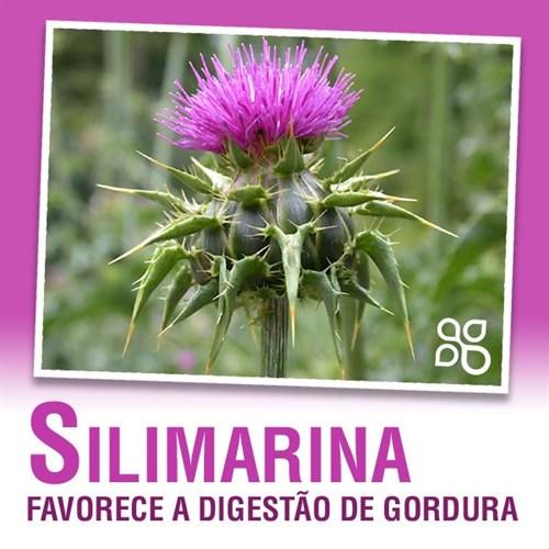 Silimarina
