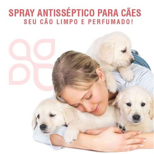 Spray antisséptico para cães - essência de cenoura raízes 200ml