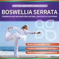 Boswellia Serrata 300mg 100 cápsulas