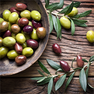 Floral de Olive