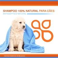 Shampoo 100% natural para cães