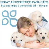 Spray antisséptico p/ cães - essência de jabuticaba