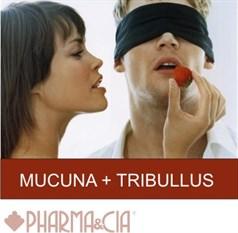 MUCUNA + TRIBULLUS  60 CÁPSULAS