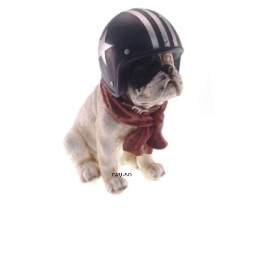 Deco Dog com Capacete
