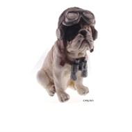 Bulldog aviador