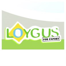 Loygus For Export