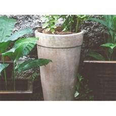 Aluguel de vaso de cimento
