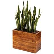 Vaso madeira de demolição - locação e venda
