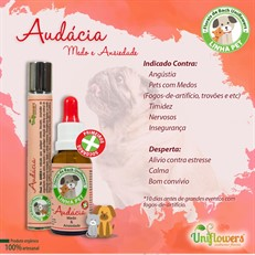Floral Pet Audácia Roll-on – Uniflowers