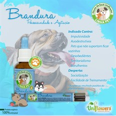 Floral Pet Brandura Roll-on – Uniflowers