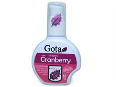 Cranberry - Chá de bolso - Eden 60ml