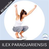 Ilex Paraguariensis  100mg com 60 capsulas