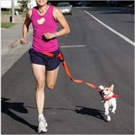 Guia Coleira para cachorros - Com cinto para correr