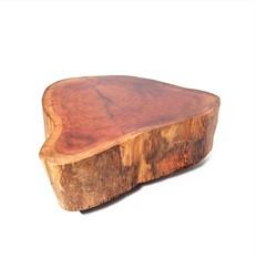 Coffee Table Organic Wood