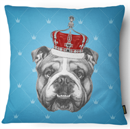 CAPA DESIGN 43 x 43 - BULLDOG