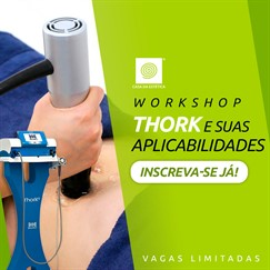 Workshop - Thork Ondas de Choque e suas Aplicabilidades