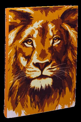 Bíblia Leão Ouro Ilustrada Flecha Capa Dura Nova Almeida Atualizada
