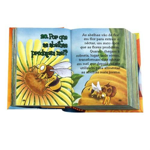 O Livro dos Porquês