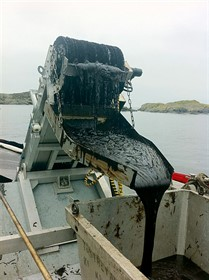 Recolhedor de óleo Bow Collector