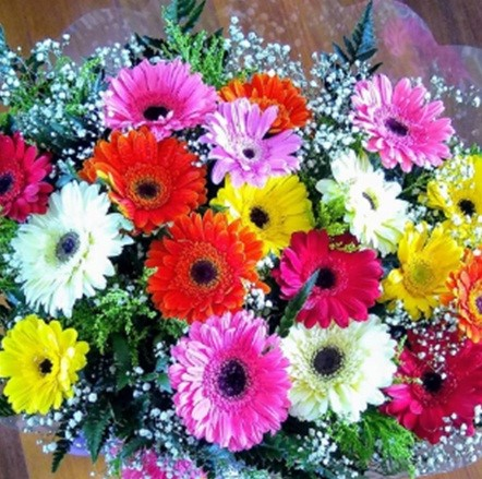 Lindo Bouquet de Gérberas