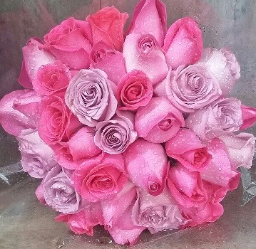 Bouquet de noiva rosas - Rosa