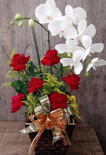Linda Orquídea com rosas nacionais