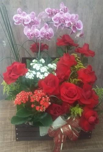 Lindo Arranjo de Orquídea, Rosas Colombianas no Baú