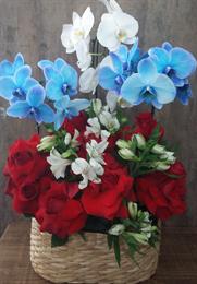 Lindo Arranjo de Orquídea Azul, Branca, Astromélias e Rosas Colombianas