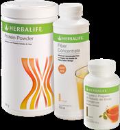 Fiber Mix Herbalife Grande (Fiber Concetrate Herbalife + Chá Herbalife 100g + Protein Powder Herbalife 480g)