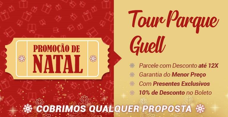 Tour Parque Guell Natal