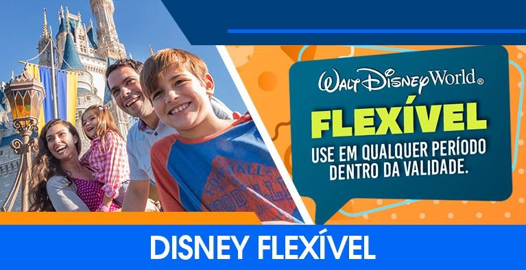 Disney flex