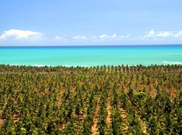 Tour a Praia Gunga