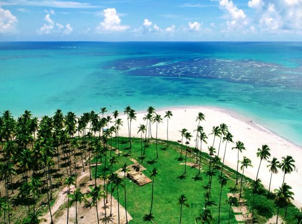 Hotéis na Praia dos Carneiros