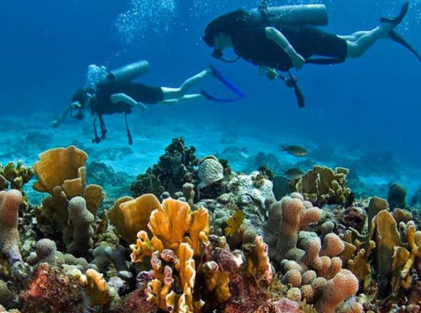 Mergulho em Cozumel