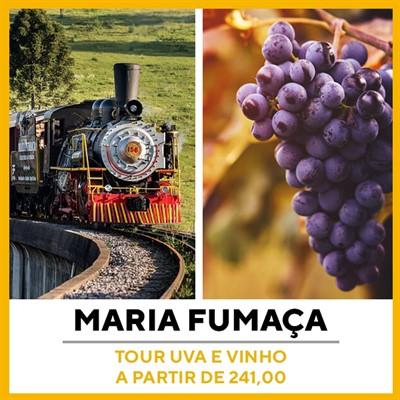 Tour Uva e Vinho Gramado