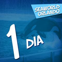 Ingresso 1 Dia SeaWorld Orlando - O Parque de Vida Marinha Mais Famoso do Mundo - ADULTO ou CRIANÇA - 2018 ou 2019