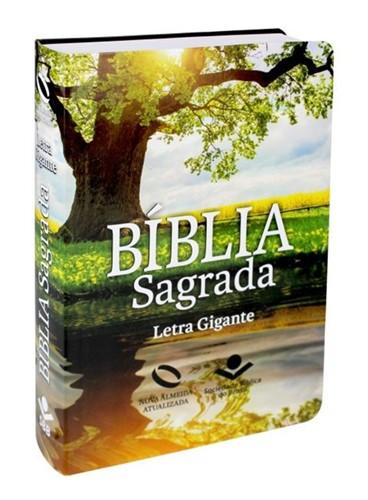 Bíblia Letra Gigante Semi Flexível Reflexo Índice Digital Nova Almeida Atualizada