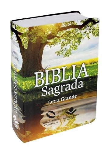 Bíblia Letra Grande Semi Flexível Reflexo