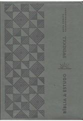 BÍBLIA DE ESTUDO SWINDOLL NVT-PETRA