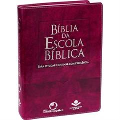 BÍBLIA DA ESCOLA BÍBLICA GRANDE SINTÉTICO PÚRPURA NOBRE- RA