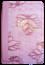 Bíblia NVT Letra Grande Zíper Bi-Color Rosa Folha com Rosa Brilhante