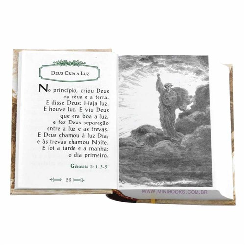 A Santa Bíblia Ilustrada de Gustavo Doré