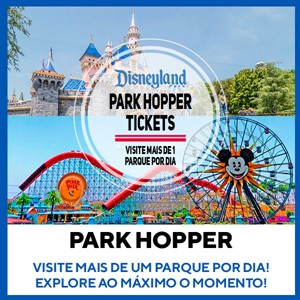 Disney Park Hopper