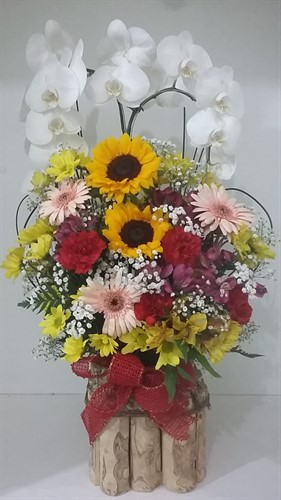 Arranjo de Orquídea com flores do campo